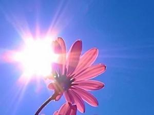 Нижегородцев ждет жаркая и солнечная неделя