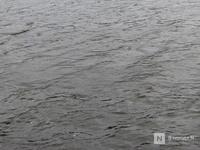Связанное тело в автозаводском озере