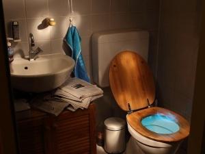 Как правильно использовать бачок унитаза, чтобы платить за воду в квартире гораздо меньше