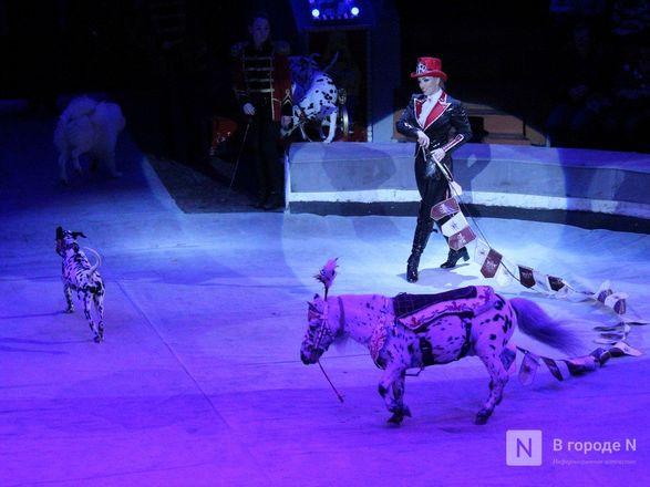 Чудеса «Трансформации» и медвежья кадриль: премьера циркового шоу Гии Эрадзе «БУРЛЕСК» состоялась в Нижнем Новгороде - фото 63
