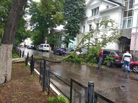 Машины завалило деревьями после урагана в Нижегородской области