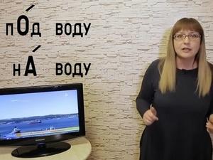 Многоженцы и коварные числительные — нижегородская «училка» нашла новую порцию ошибок в телеэфире