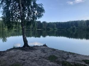 Подросток погиб на Лесном озере в Автозаводском районе