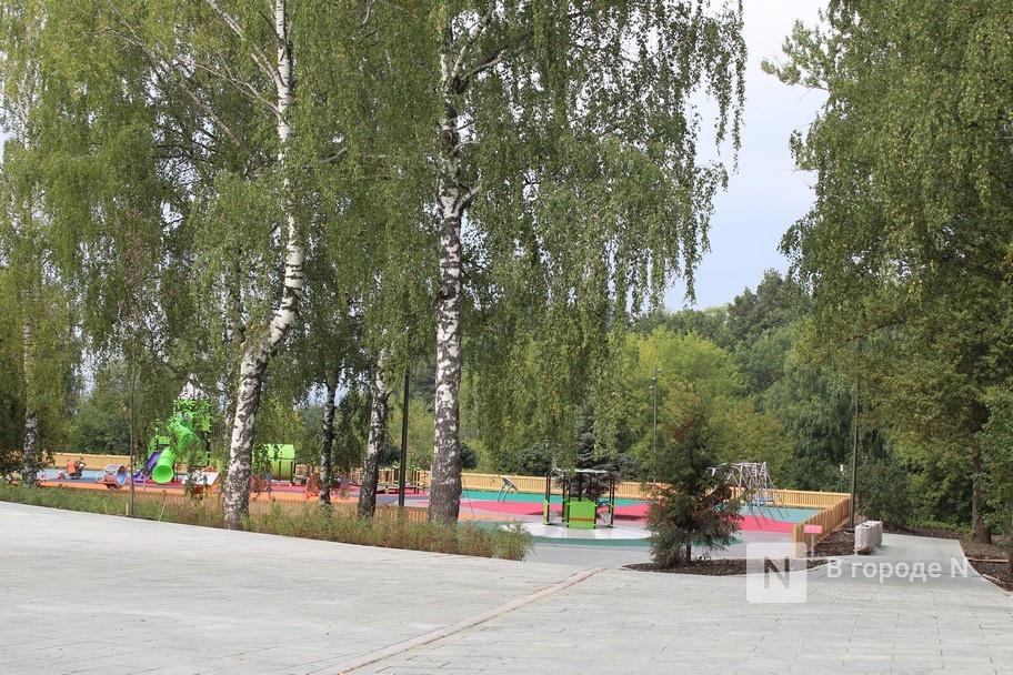 52 гектара для отдыха: Как изменился парк «Швейцария» - фото 1