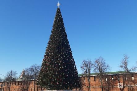 1,5 тысячи шаров и пять километров гирлянд украсили главную елку Нижнего Новгорода