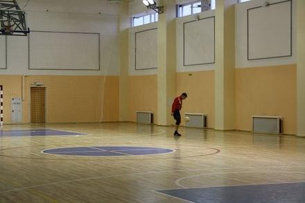 Легкоатлетический манеж появится на стадионе «Локомотив» в Канавине