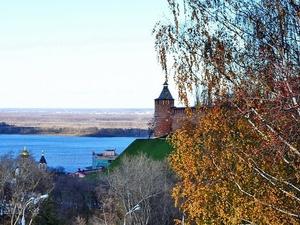 Экспорт в Нижегородской области вырос на треть