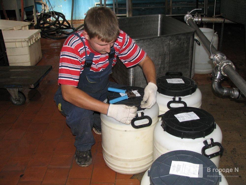 Производство молока увеличилось в Нижегородской области на 175,5 тысяч тонн - фото 1