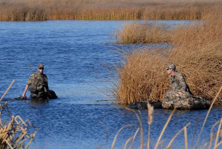 Охота на пернатую дичь закрывается в Нижегородской области с 16 ноября - фото 1