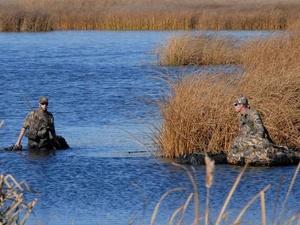 Охота на пернатую дичь закрывается в Нижегородской области с 16 ноября