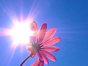 Нижегородцев ждут теплые и солнечные выходные