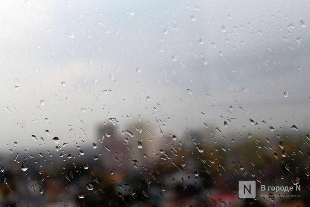 Сильные дожди пройдут в Нижегородской области 21 июля  - фото 1
