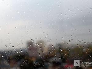 Сильные дожди пройдут в Нижегородской области 21 июля