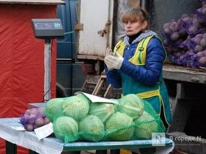 Цены на капусту и вермишель снизились в Нижегородской области