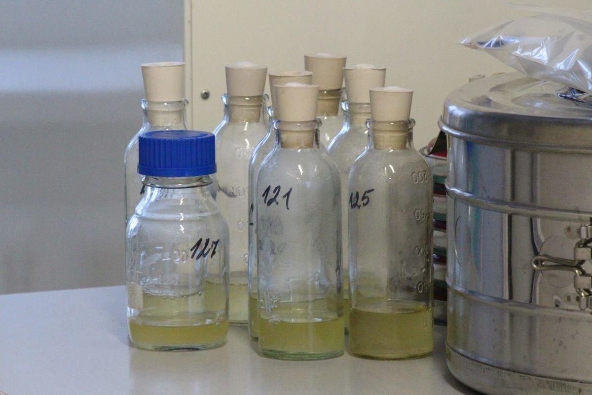Химические соединения для микроэлектроники будут производить в Сормове - фото 1