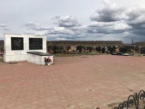 Противоклещевую обработку проведут на нижегородских кладбищах