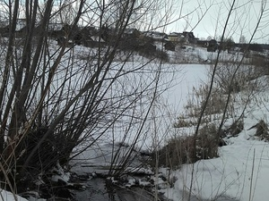 Долгожданное потепление пришло в Нижний Новгород